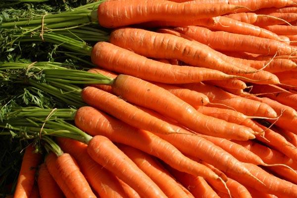 Šargarepa pomaže u liječenju opekotina i rana